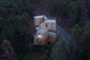 An 11-metre-tall tree house surrounded by a sea of red cedars