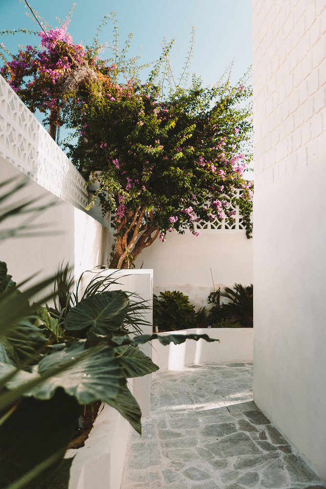 13_Santa Teresa House_Amelia Tavella Architectes_Inspirationist